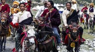horse_race